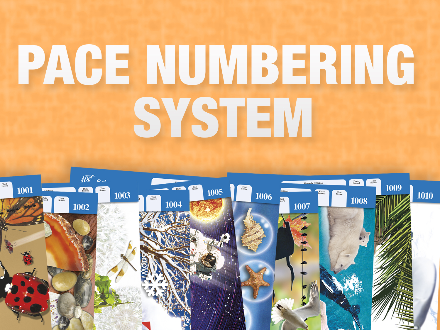 PACE Numbering System